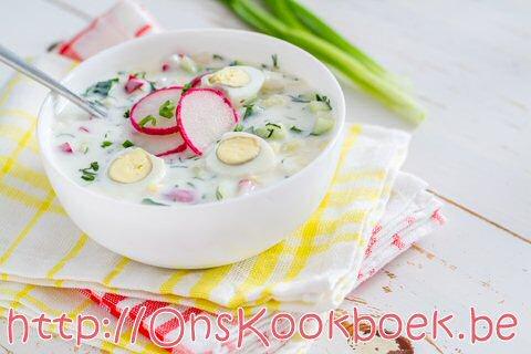 Okroshka koude maaltijdsoep uit Rusland